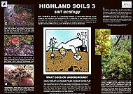 SOILS 3 - ECOLOGY