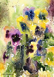 Esther Armstrong 'Pansies'