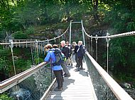 Rogie Falls Walk