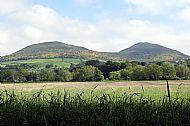 Eildon Hills 2