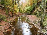 Den of Alyth walk - Alyth Burn