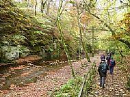 Den of Alyth Walk - Den walk