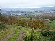 Den of Alyth Walk - View to Alyth