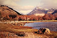 Head of Loch Etive