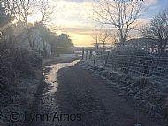 Winter walk by Selma Croft to Tralee