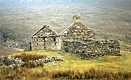 The Highland Clearances: a capitalist tragedy