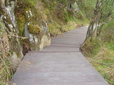 recycled plastic boardwalk through designated landscape