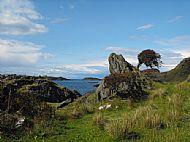 Coastal farm - West Highlands
