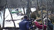 BBC Countryfile at the Knapdale beavers