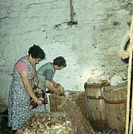 HPA072 Plucking Hens for sale to the  vans. Mary and Jemima Brown. August 1966