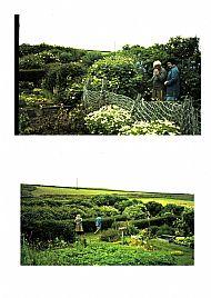 HPA212 Garden at Stove (H. Walls)