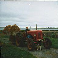 HPA759   Magnus Thorne, Quivals Farm