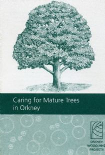 Care of Mature Trees in Orkney