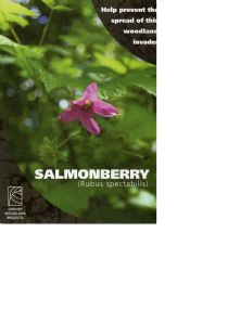 Salmonberry - a woodland invader