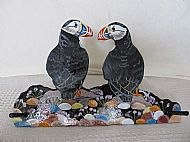 Affectionate Puffins