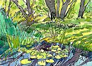 Pond, Taynish.