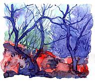 Taynish Trees