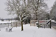 denford-in-snow