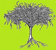 Mighty Tree cd