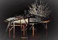 Nest build frame