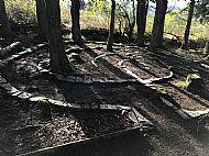 Blarbuie Woodland labyrinth