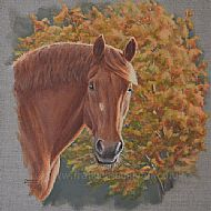 NEW Autumnal Suffolk - Suffolk Punch horse