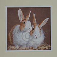 Dutch Friends - Rabbits
