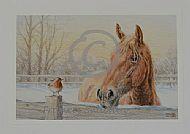Winter Friends - Suffolk Horse and robin