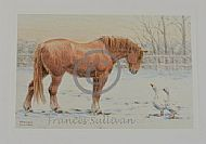 Winter Visitors - Suffolk Horse & geese