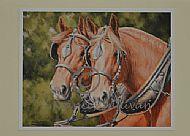 Working Friends - Suffolk horses