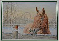 Winter Friends Christmas Card - Suffolk Horse and robin