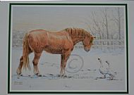 Winter Visitors Christmas Card - Suffolk Horse and geese