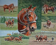A Celebration of the Suffolk Horse