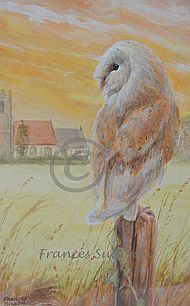 Ellingham Dusk - Barn Owl  SOLD