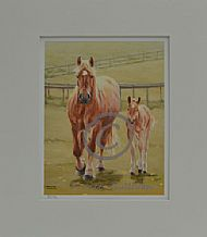Ambling - Suffolk Horse mare and foal