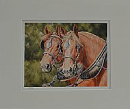 Working Friends - Suffolk horses in harness