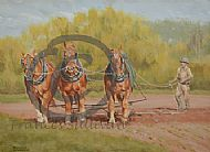 Three on the Harrow - suffolk horses working SOLD