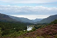 Look West from Loch Affric
