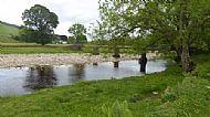 River South Tyne Alston