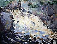 Salmon leaping, Falls of Shin