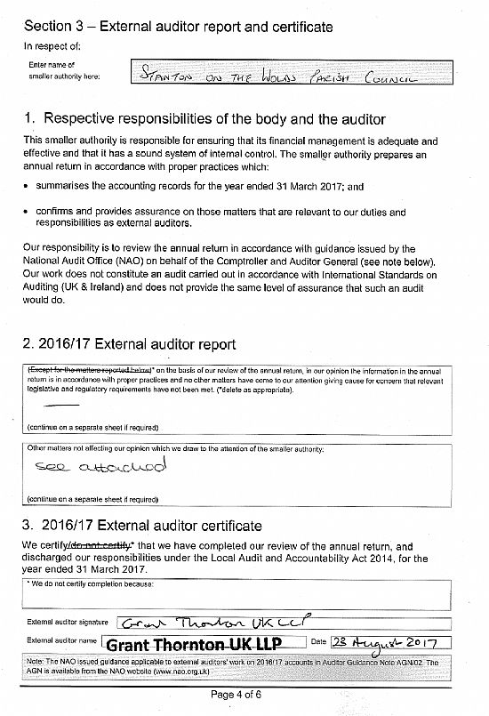 expernal auditor report