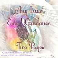Any Issue Guidance: 1 - 2 Issues