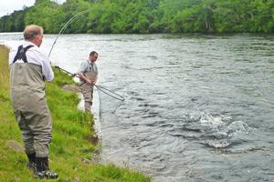river conon grilse
