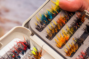 trout fly box