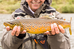 loch craggie brown trout
