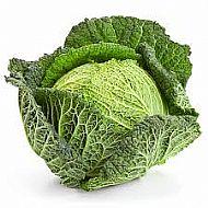IOW Savoy Cabbage