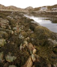 The old harbour at Acairseid an Rhuba