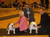BEST IN SHOW & RES BEST IN SHOW