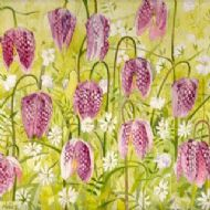 Fritillaria Multiple
