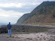 Shandwick Beach Towards Nigg